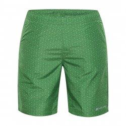 Men's shorts Alpine Pro Kael green