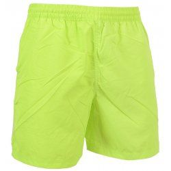 Men's shorts Alpine Pro Lomas 530